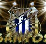 Santos - Arenasore.net