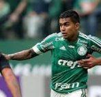 Sport Club do Recife vs Palmeiras
