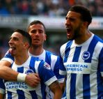 agen-sbobet-online-prediksi-sheffield-wednesday-vs-brighton-hove-albion
