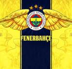 Fenerbahce - Arenascore.net